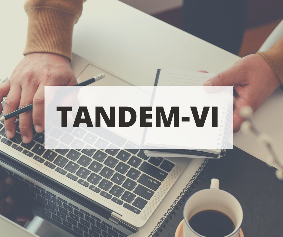 TANDEM-VI